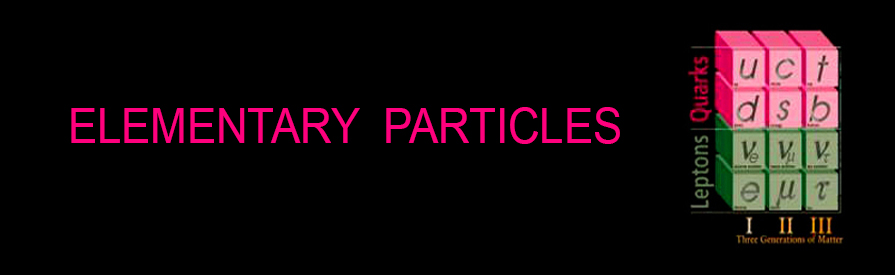 Elementary Particle Page